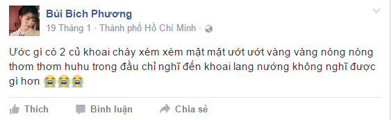 Dac diem 'nhan dang' Bich Phuong la gi? hinh anh 9