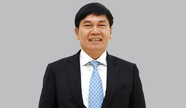 Tap doan Hoa Phat the chap bao nhieu co phieu cua ty phu do la Tran Dinh Long tai ngan hang? hinh anh 1