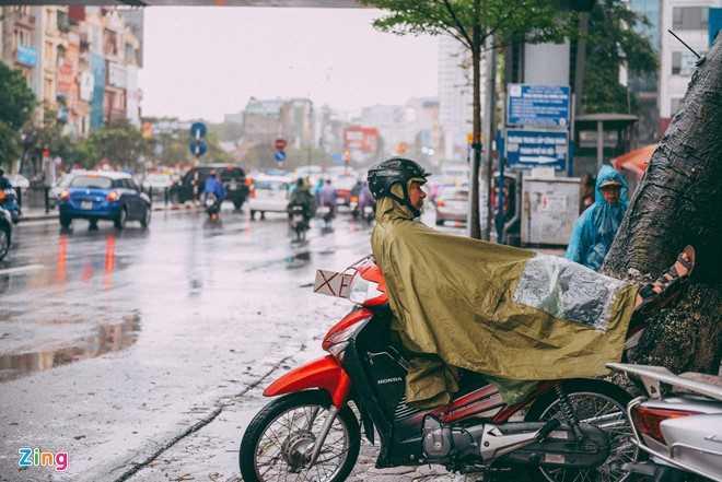 Canh doi muu sinh trong mua ret lay nuoc mat hang trieu nguoi hinh anh 3