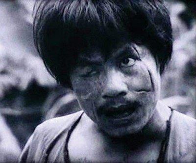 Tien si van hoc chi ro ly do khong the loai tac pham 'Chi Pheo' ra khoi SGK hinh anh 2