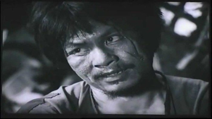 De xuat loai 'Chi Pheo' ra khoi SGK: 'Anh Song Hien nen ve nuoc hoc lai van hoc' hinh anh 3