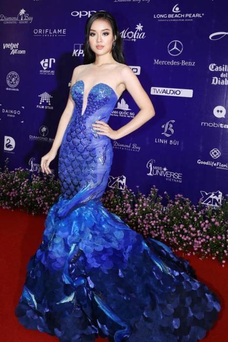 Hot girl DH Phong chay chua chay gianh giai Nguoi dep tai nang Hoa hau Hoan vu 2017 hinh anh 6