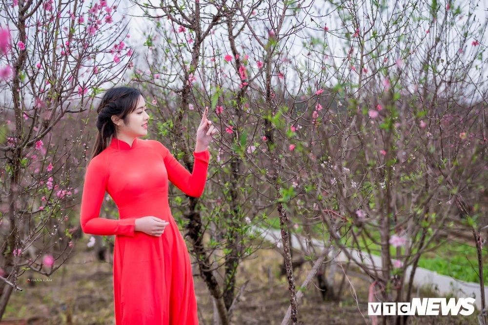 Hot girl Dai hoc Kiem sat Ha Noi khoe sac tham ben hoa dao ngay Xuan hinh anh 2