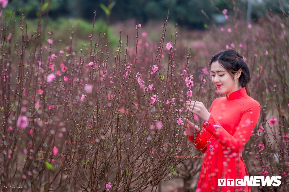 Hot girl Dai hoc Kiem sat Ha Noi khoe sac tham ben hoa dao ngay Xuan hinh anh 4
