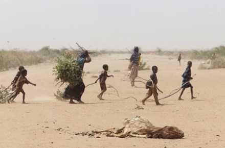 Han han o Somalia: 110 nguoi chet trong 48 gio hinh anh 1