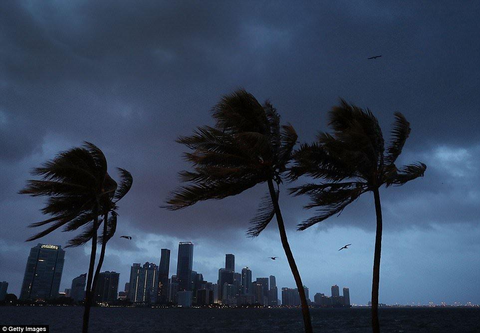 Video: Voi rong khong lo xuat hien, can truc xay dung quay tit khi sieu bao Irma do bo Florida hinh anh 1