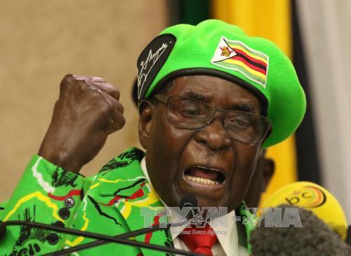 Tong thong Zimbabwe va vo dang bi quan doi tam giu hinh anh 1