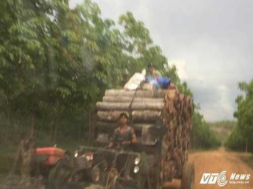 Doan xe 'hut mau rung' ram ram tren duong: Chu tich tinh chi dao dieu tra hinh anh 2