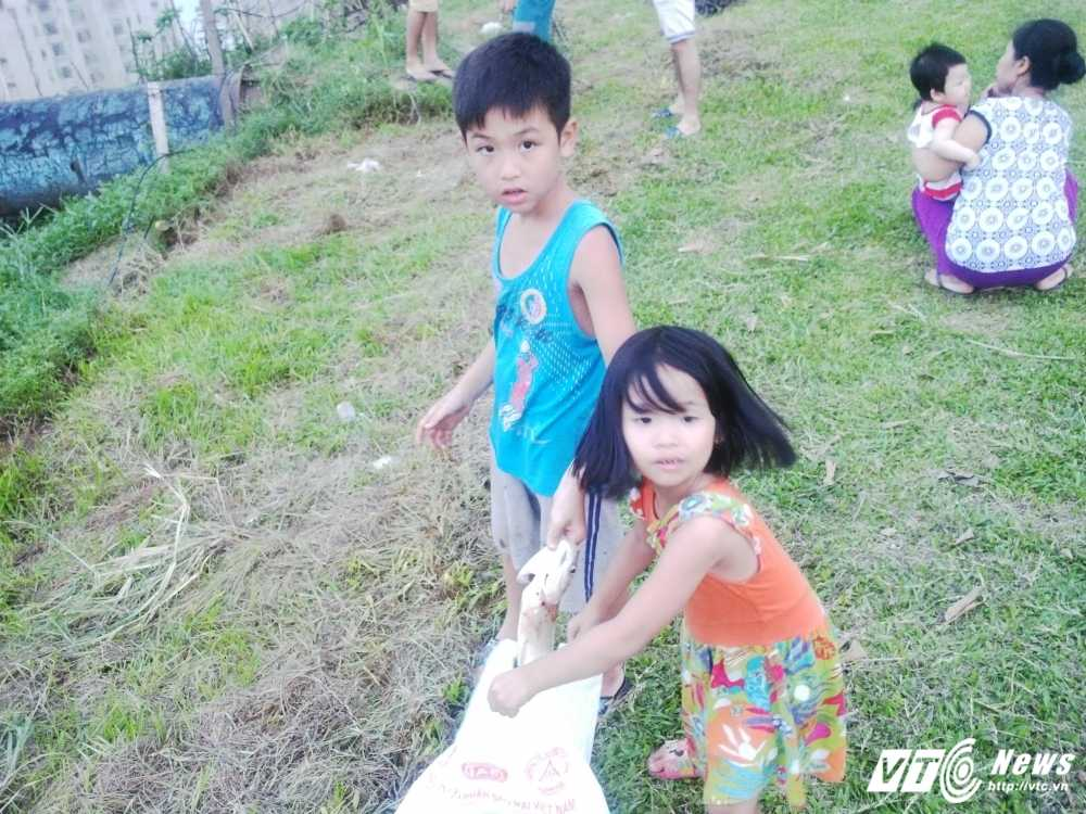 Anh: Tre nho hao huc cung gia dinh bat ca tren song To Lich hinh anh 8