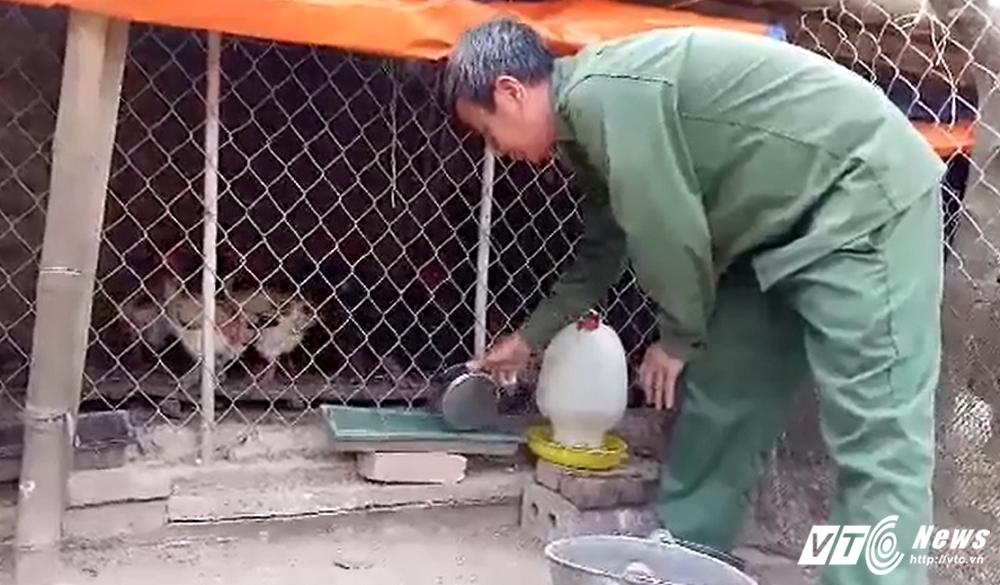 Ga Dong Tao chan 'khung' chet hang loat: Co quan chuc nang chinh thuc cong bo nguyen nhan hinh anh 4