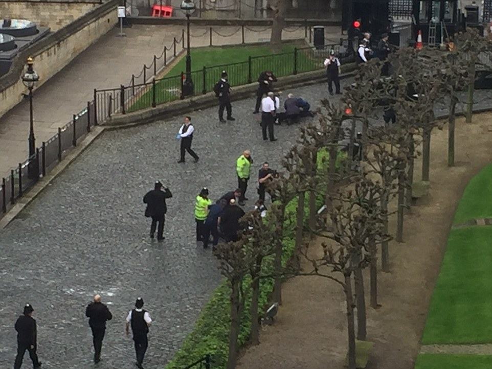 3E86A64300000578-4338998-Emergency_teams_were_seen_carrying_out_CPR_inside_the_palace_gro-a-64_1490196071251