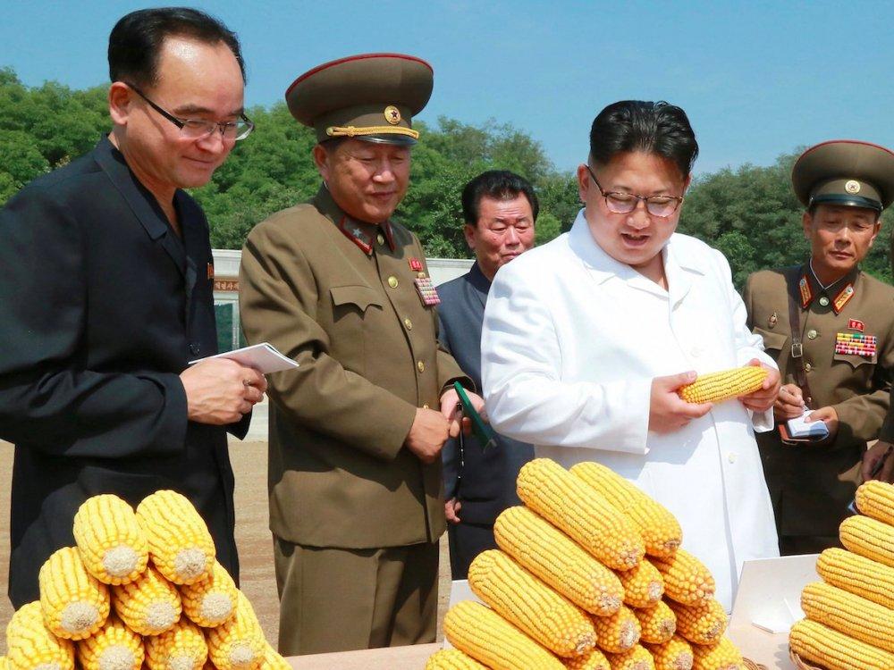 Cuon so tay bi an cac quan chuc thap tung ong Kim Jong-un luon mang theo ben nguoi hinh anh 2