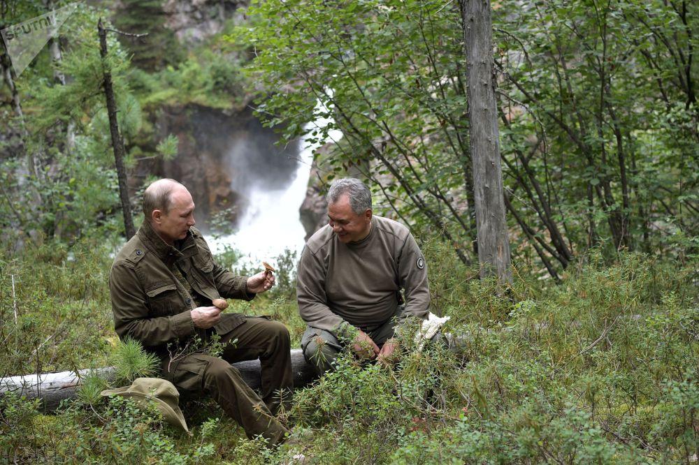 Video: Tong thong Putin di lan san ca o Siberia hinh anh 1
