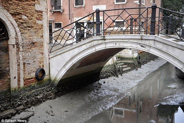 Anh: Hang loat kenh dao o Venice can tro day sau sieu trang hinh anh 7
