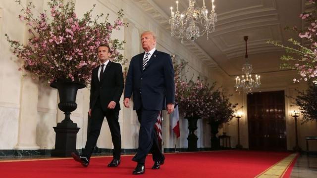 Ong Trump tung de nghi Tong thong Macron rut khoi Lien minh chau Au? hinh anh 1