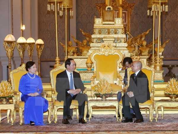 Chu tich nuoc Tran Dai Quang hoi kien Quoc vuong Norodom Sihamoni tai Hoang cung Campuchia hinh anh 1
