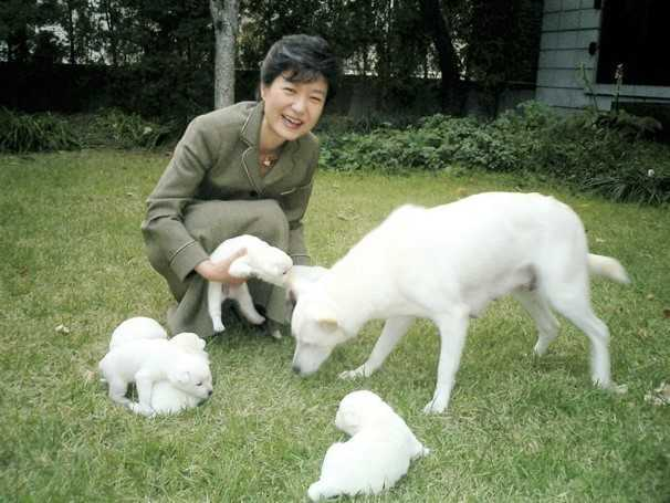 Bo lai cho o Nha Xanh, ba Park Geun-Hye bi khieu nai hinh anh 1