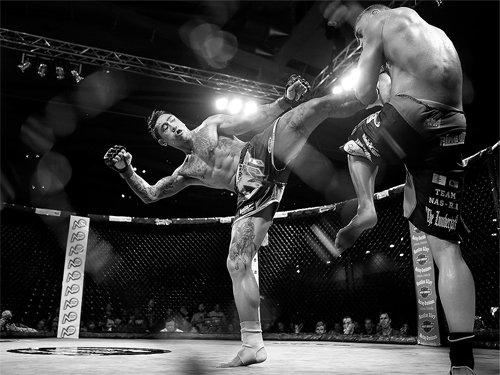 MMA la gi va muc do thuc chien the nao so voi vo thuat Trung Quoc hinh anh 2