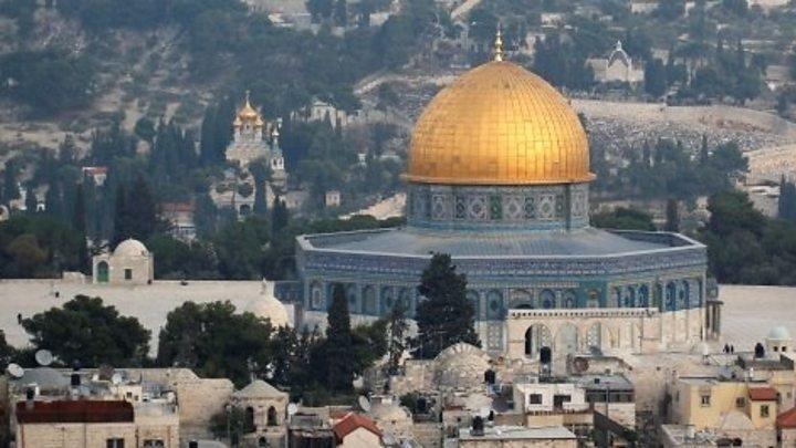 Tong thong Trump cong nhan Jerusalem la thu do Israel hinh anh 2