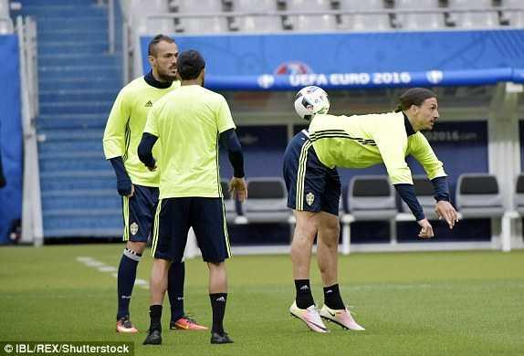 Truc tiep EURO 2016: Thuy Dien vs CH Ailen hinh anh 15