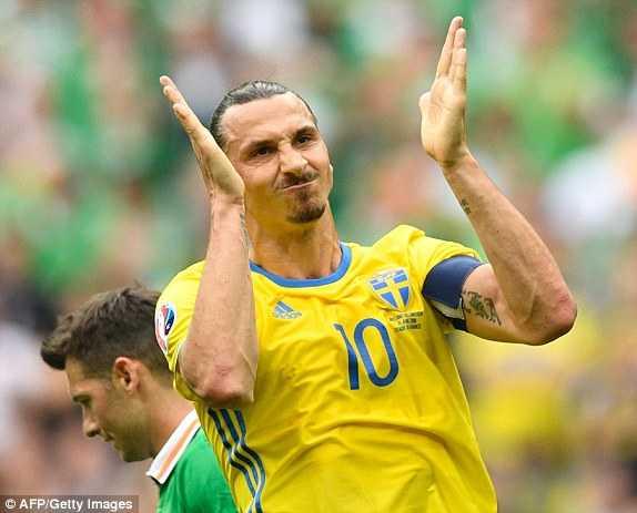 Truc tiep EURO 2016: Thuy Dien vs CH Ailen hinh anh 3