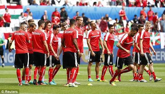 Truc tiep EURO 2016: Ao vs Hungary hinh anh 8