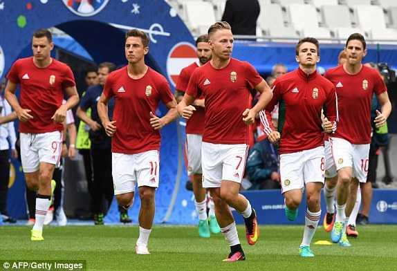 Truc tiep EURO 2016: Ao vs Hungary hinh anh 7
