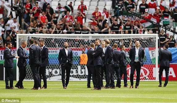 Truc tiep EURO 2016: Ao vs Hungary hinh anh 12