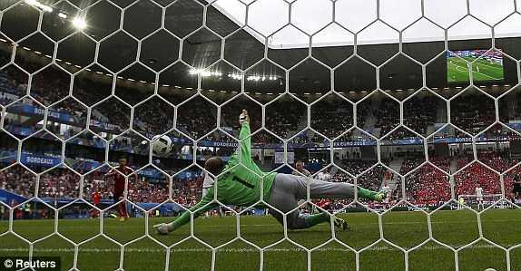 Truc tiep EURO 2016: Ao vs Hungary hinh anh 3