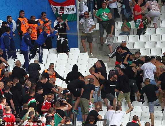 Truc tiep Euro 2016: Iceland vs Hungary hinh anh 14