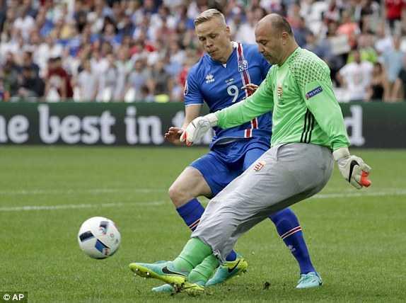 Truc tiep Euro 2016: Iceland vs Hungary hinh anh 8