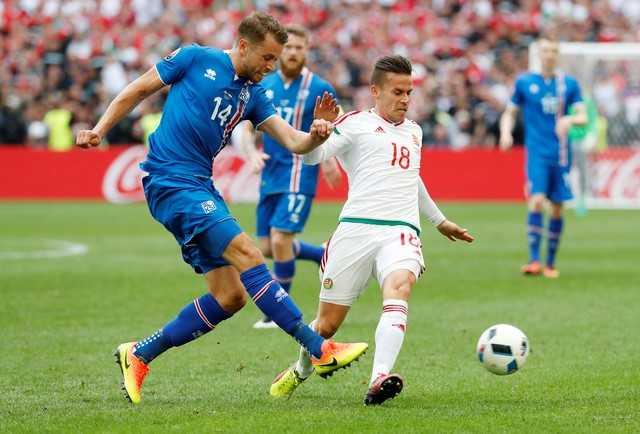 Truc tiep Euro 2016: Iceland vs Hungary hinh anh 6
