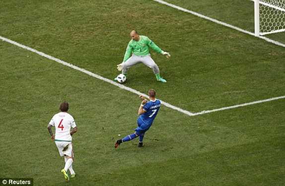 Truc tiep Euro 2016: Iceland vs Hungary hinh anh 7