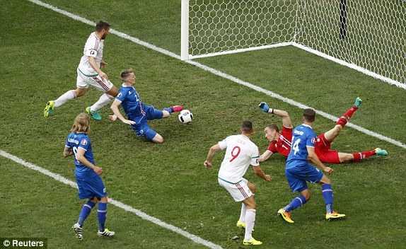 Truc tiep Euro 2016: Iceland vs Hungary hinh anh 1