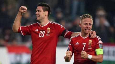 Truc tiep vong 1/8 Euro 2016: Bi vs Hungary hinh anh 8