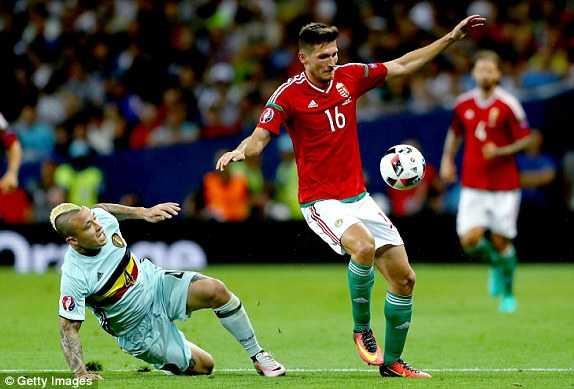 Truc tiep vong 1/8 Euro 2016: Bi vs Hungary hinh anh 1