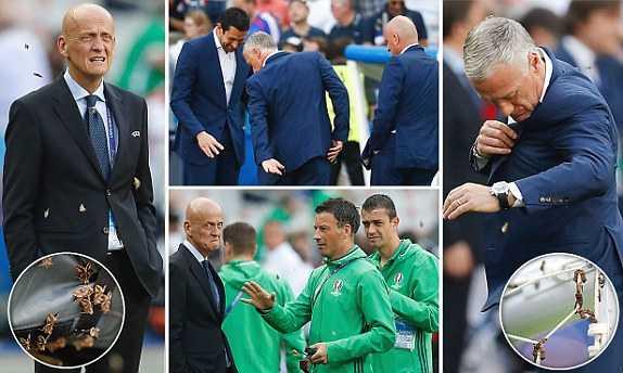 Buom dem dau len mat Ronaldo, pha dam chung ket Euro 2016 hinh anh 6