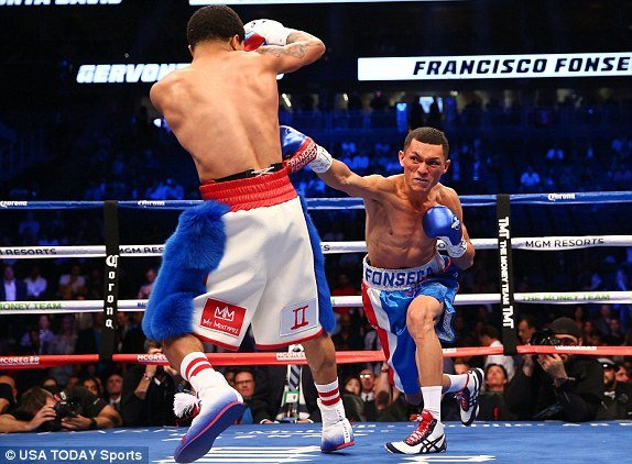 Video Highlight boxing ty USD: Floyd Mayweather  vs Conor McGregor hinh anh 9