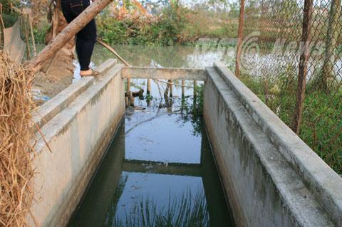Nước thải chảy thẳng ra kênh cấp nước cho hàng ngàn hộ dân các xã lân cận - Ảnh Minh Khang