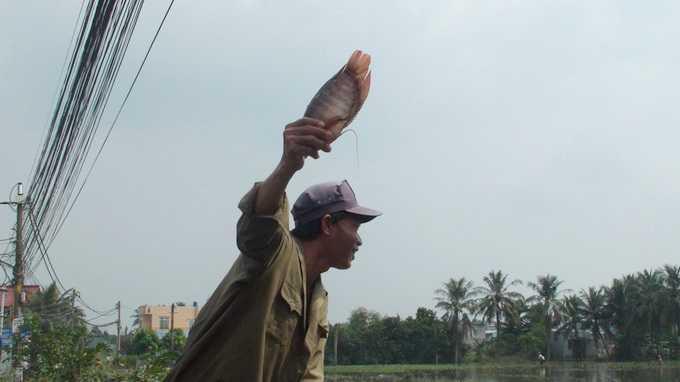 Niềm vui bắt được cá to (Ảnh: TTO)