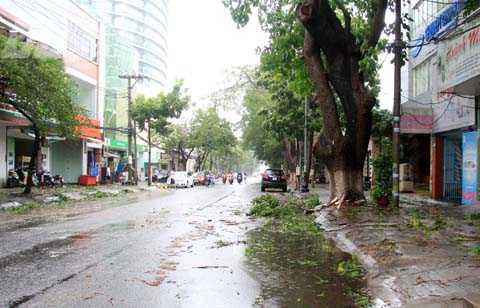 Mặc dù bão số 11 chưa vào nhưng gió to đã làm các tuyến phố Đà Nẵng xơ xác