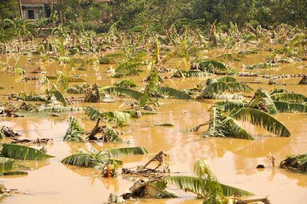 Hiện một số xã của huyện Đại Lộc vẫn ngập trong lũ. Ảnh: Chinhphu.vn