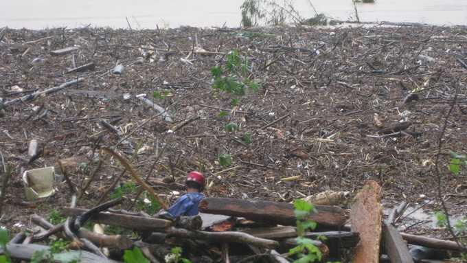 Củi rều dạt vào xã Sơn Trung, huyện Hương Sơn bên Quốc lộ 8 - Ảnh: Vũ Toàn