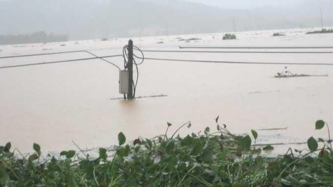 Nước trên sông Ngàn Phố nhấn chìm 19/32 xã của huyện Hương Sơn. Trong ảnh: một cột điện bị nhấn chìm - Ảnh: Vũ Toàn