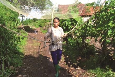 Xong việc ruộng nương, bà Ngọ còn dùng chiếc vó này kiếm cá nhỏ về bán để lo cho gia đình. Ảnh: Hữu Phúc