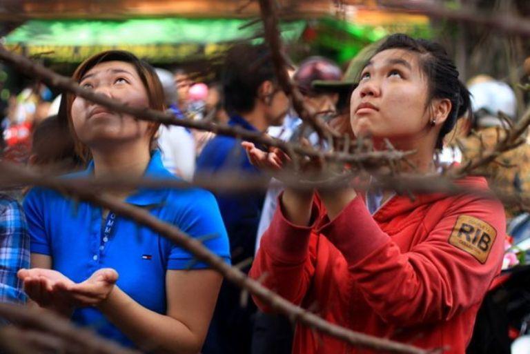 Nhiều người cố nán lại, có người chờ hàng giờ, để hứng hoa Sa La rụng lấy lộc, với hy vọng sẽ nhận thêm phúc lành từ cửa Phật.