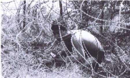Cắt hàng rào dây thép gai