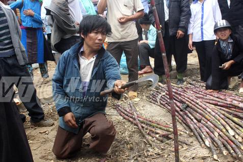 Trò chơi chặt mía ăn tiền ở địa đầu Hà Giang