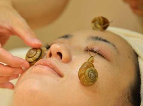 Chất nhầy của ốc sên được tin là rất tốt cho da