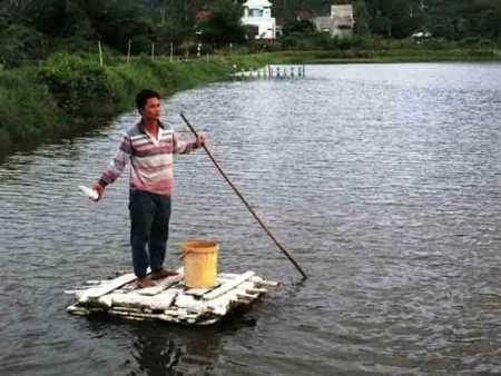 Tốt nghiệp ĐH ngành tài chính kế toán nhưng 5 năm xin việc không được, anh Huỳnh Thanh Tú đành phụ cha nuôi tôm.